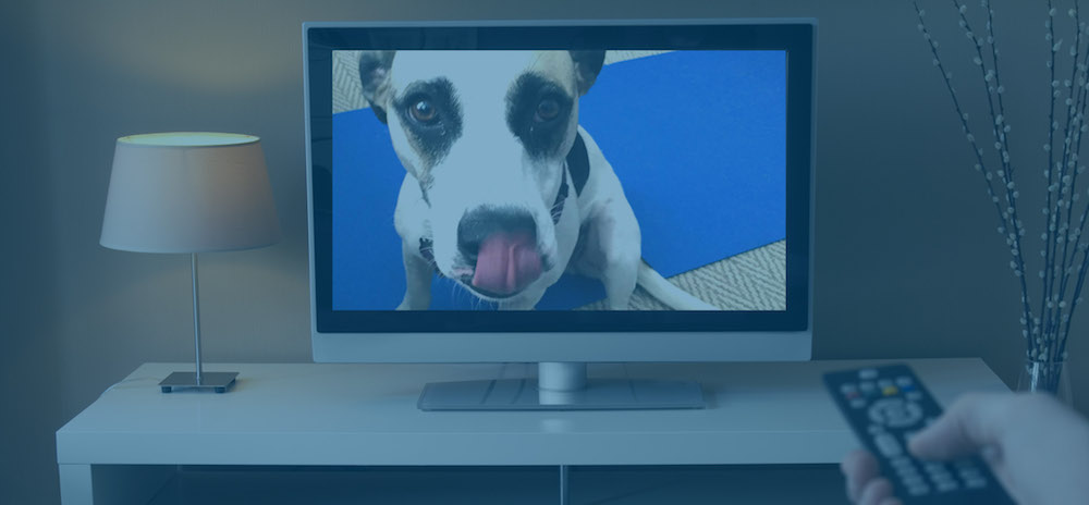 Fastest RTSP Live Streaming